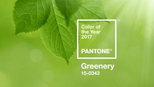 colour of the year greenery